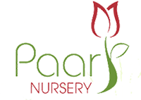 Paarl Nursery Logo